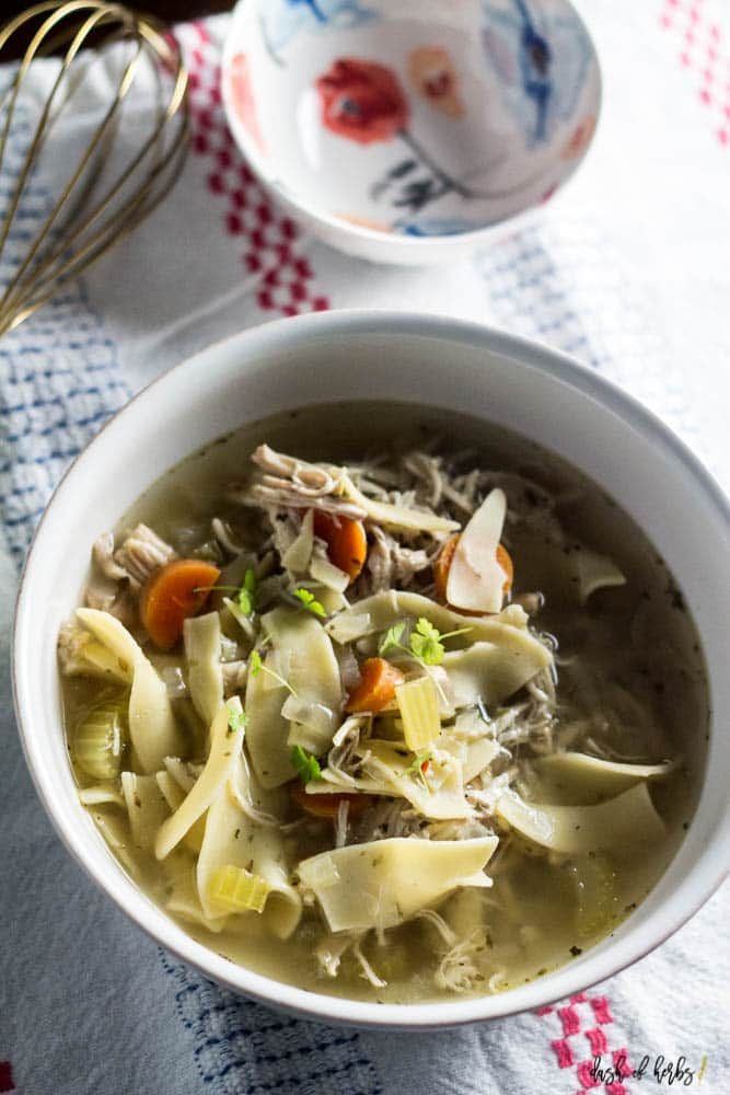 Easy and Quick Chicken Noodle Soup - Dash of Herbs