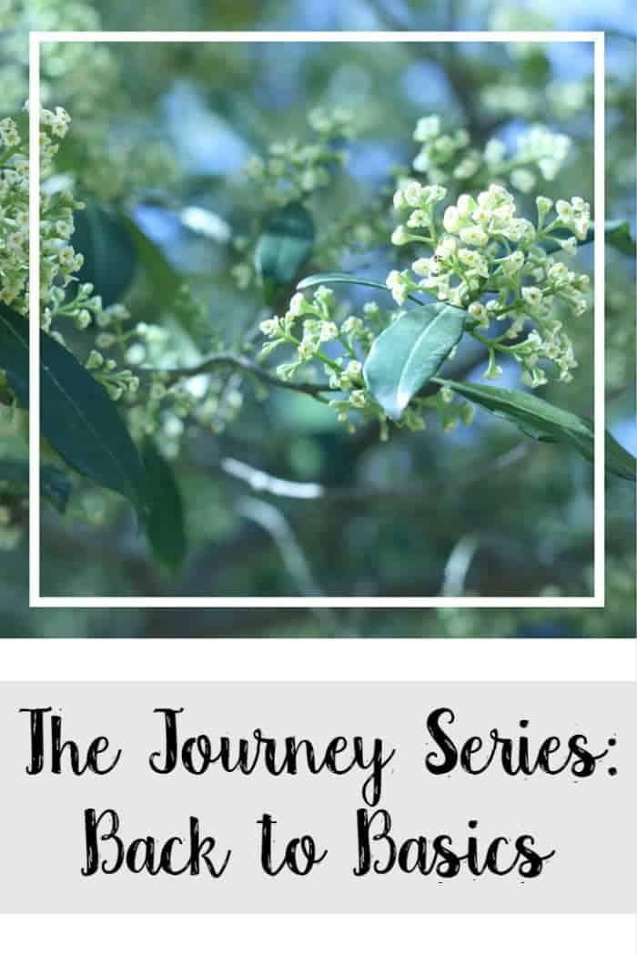 The Journey Series: Back to Basics