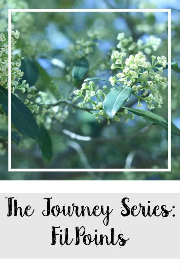 The Journey Series: FitPoints