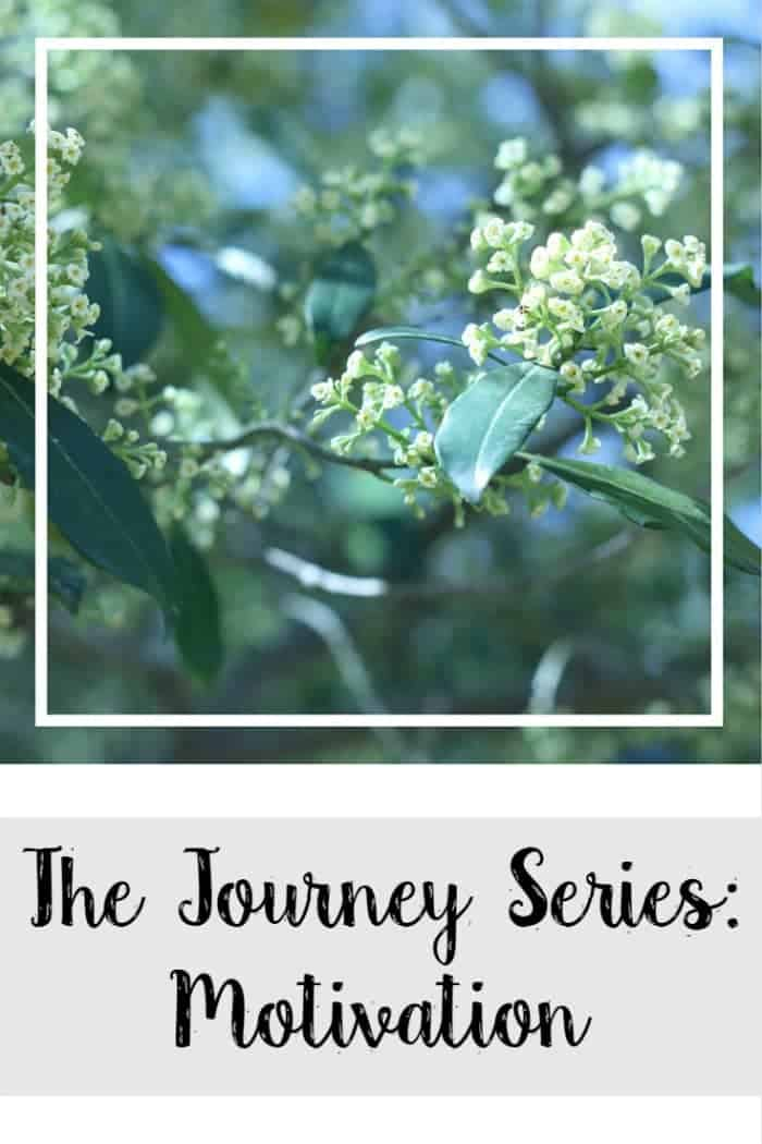 The Journey Series: Motivation