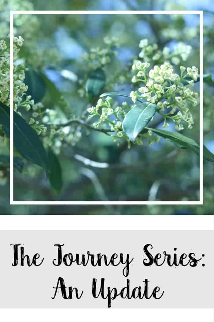 the-journey-series-update
