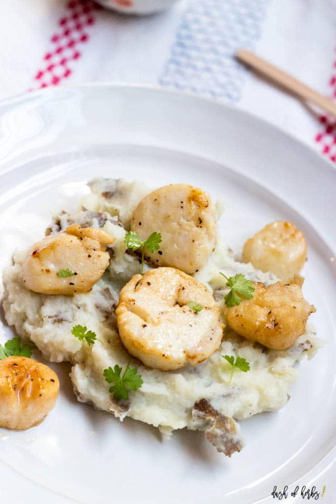 A close up image of the Seared Scallops with Garlic Mashed Potatoes recipe on a white plate.  The image shows six scallops on top of a bed of mashed potatoes.  There is a colorful napkin underneath the plate.