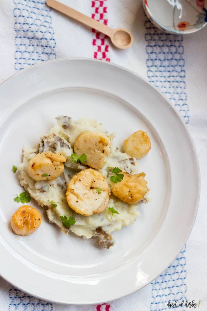 An overhead image of the Seared Scallops with Garlic Mashed Potatoes recipe on a white plate.  The image shows six scallops on top of a bed of mashed potatoes.  There is a colorful napkin underneath the plate.