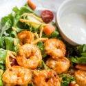 A close up image of the Buffalo Shrimp Salad recipe shown on a white plate. You can see the buffalo shrimp, tomatoes, lettuce, cucumbers and cheese. There is a small white bowl of ranch on the plate as well.